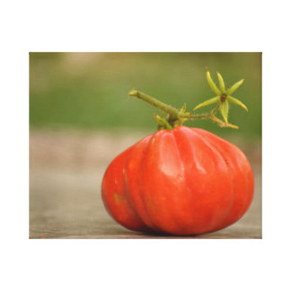 Red, ripe tomato canvas print