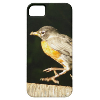 Red Robin Bobbin iPhone 5 Covers