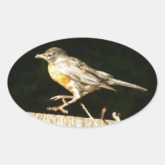 Red Robin Bobbin Oval Sticker