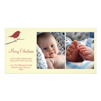 Red robin snowy branch cream Merry Christmas Photo Card Template