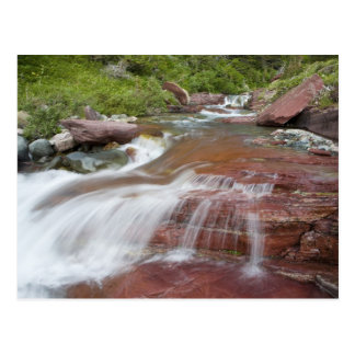 Red rock in Baring Creek in Glacier National Postcard