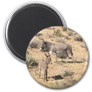 Red rock state park nv donkey 6 cm round magnet