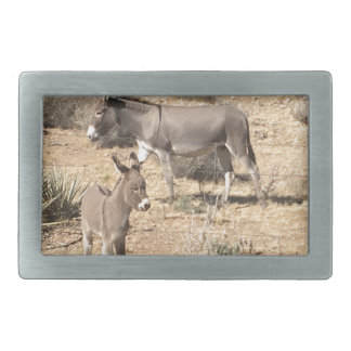 Red rock state park nv donkey belt buckles