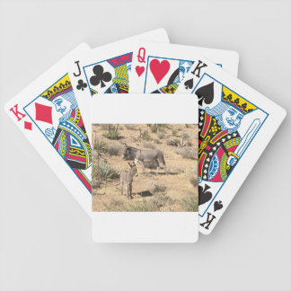 Red rock state park nv donkey bicycle playing cards