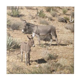 Red rock state park nv donkey ceramic tile