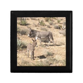 Red rock state park nv donkey gift box