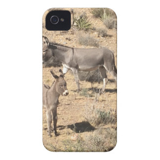 Red rock state park nv donkey iPhone 4 Case-Mate case