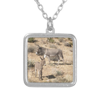 Red rock state park nv donkey silver plated necklace