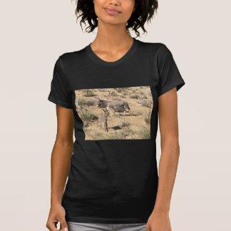 Red rock state park nv donkey T-Shirt
