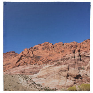 Red rocks and blue skies napkin