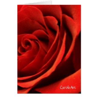 Red Romance Rose Card