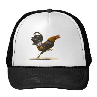 Red Rooster Cap