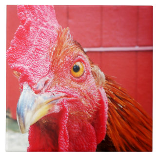 Red Rooster Country Kitchen Tile