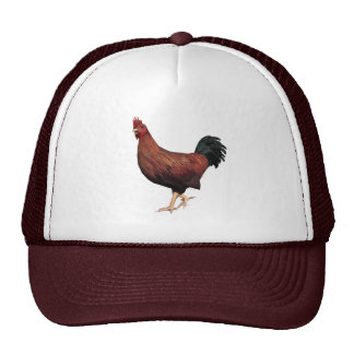Red Rooster Mesh Hat