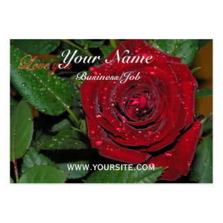 Red Rose #2 Pack Of Chubby Business Cards