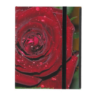 Red Rose #2 Cover For iPad