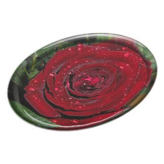 Red Rose #2 Dinner Plate