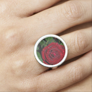 Red Rose 2 Photo Rings