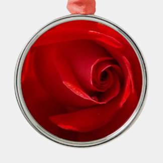 Red-Rose-3.jpg Ornaments