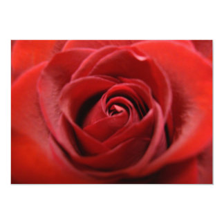 "Red Rose 5"" X 7"" Invitation Card"