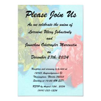 red rose against blue plastic wrap style 13 cm x 18 cm invitation card
