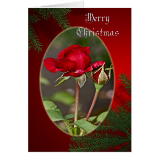 Red Rose and Bud Merry Christmas Greeting Card