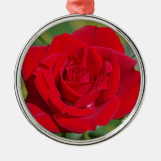 Red Rose Beauty Metal Ornament