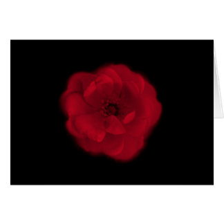 Red Rose. Black Background. Card