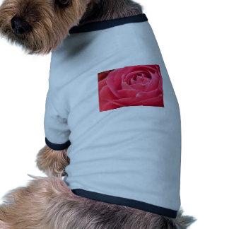 Red Rose Bloom Dog Tee Shirt