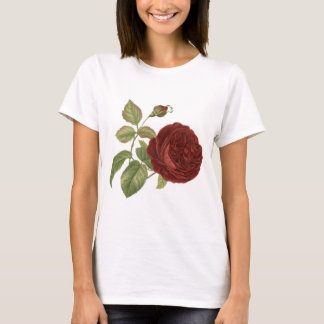 Red Rose Blossom Bloom Vintage Art T-Shirt