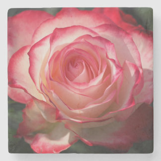 Red rose blossom stone beverage coaster