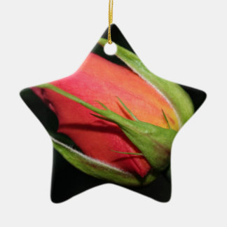 Red rose bud ceramic star decoration