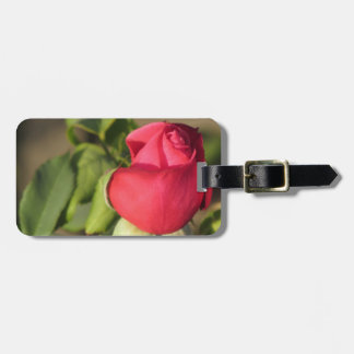 Red Rose Bud Luggage Tag