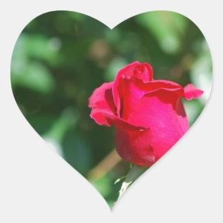 Red Rose Bud Sticker