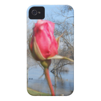 Red Rose Case-Mate iPhone 4 Case