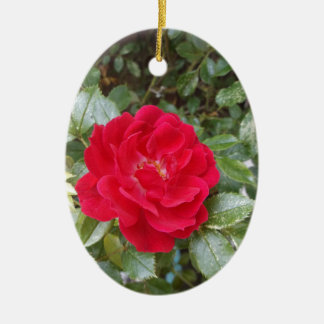Red Rose Ceramic Oval Decoration