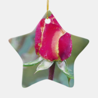 Red rose ceramic star decoration