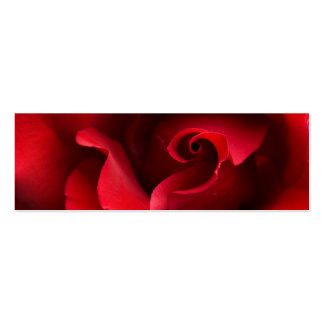 Red Rose Close-up - Customized Pack Of Skinny Business Cards