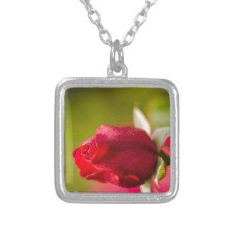 Red rose close up design silver plated necklace