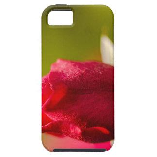 Red rose close up design tough iPhone 5 case