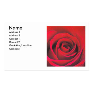 Red rose close up pack of standard business cards
