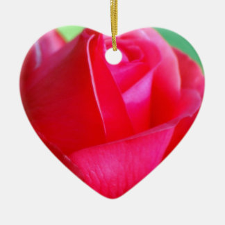 Red-rose-closeup1562 RED ROSE PHOTOGRAPHY BEAUTY N Ornament
