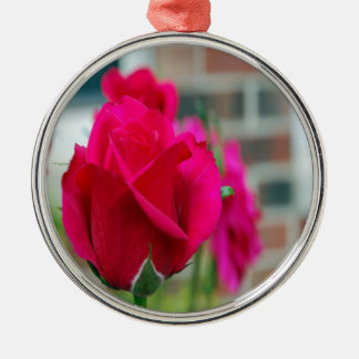 Red Rose Christmas Ornaments