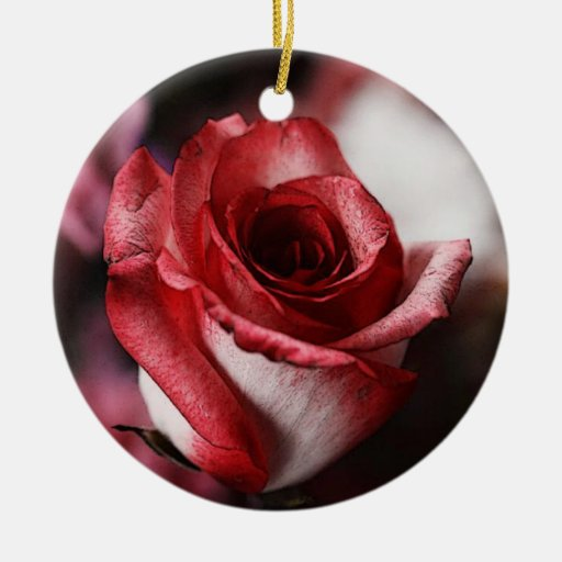 Red Rose Christmas Tree Ornament