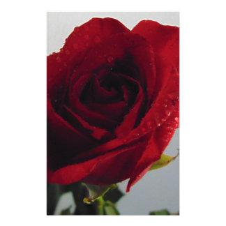 Red Rose Delight Custom Stationery