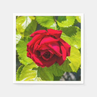 Red rose disposable napkin