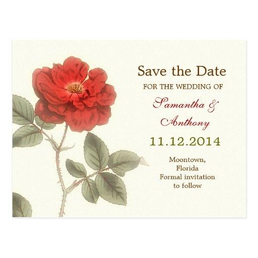 red rose elegant save the date postcards