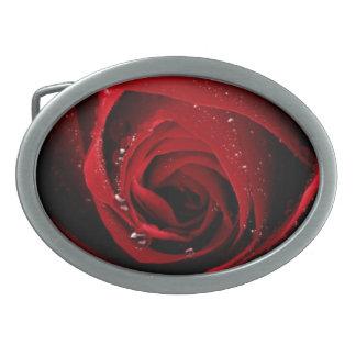 Red Rose Floral Flower Rose Petals Blossoms Dew Belt Buckles