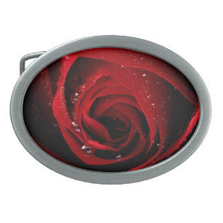 Red Rose Floral Flower Rose Petals Blossoms Dew Oval Belt Buckle