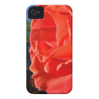 Red Rose Flower Blackberry phone cases Gifts iPhone 4 Case-Mate Cases